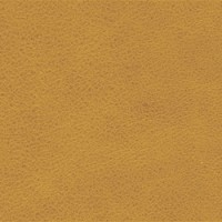 OLDENGLISH-Buckskin<br />Please ring <b>0800 999 6706</b> for more details or to order a <b>Free Sample</b>