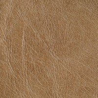 OLDENGLISH-Parchment<br />Please ring <b>0800 999 6706</b> for more details or to order a <b>Free Sample</b>