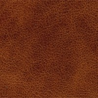 SELVAGGIO-COGNAC<br />Please ring <b>0800 999 6706</b> for more details or to order a <b>Free Sample</b>