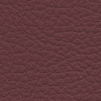 SHELLY-Burgundy<br />Please ring <b>0800 999 6706</b> for more details or to order a <b>Free Sample</b>