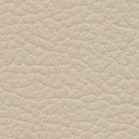 SHELLY-Ivory<br />Please ring <b>0800 999 6706</b> for more details or to order a <b>Free Sample</b>