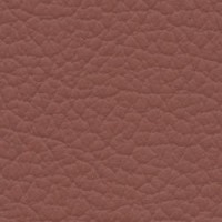 SHELLY-RUSSET<br />Please ring <b>0800 999 6706</b> for more details or to order a <b>Free Sample</b>