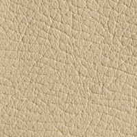 SHELLY-magnolia<br />Please ring <b>0800 999 6706</b> for more details or to order a <b>Free Sample</b>